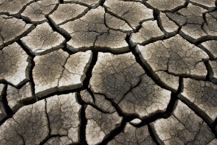 Dry cracked earth background, clay desert texture Dry Drought Earth Desert Barren Background Texture Clay Environment Arid Nature Pattern Ground Climate Dirt Soil Surface Broken Land Mud Terrain Global Hot Split Disaster Erosion Natural Closeup Sand Dirty Cracked Backgrounds Arid Climate Full Frame Scenics - Nature Natural Pattern Textured  No People Field Day Extreme Terrain Outdoors Dried