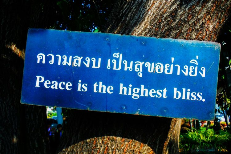 There were little signs of wisedom posted all around the tenple complex at Chiang Mai Thailand Buddhist Temple Buddhist Wisdom Wise Words Peace Peace ✌ Peace Is Love Peace Is Bliss Peace Is The Highest Bliss Buddhist Temple In Thailand Buddhist Wisedom Life Quotes Lifequotes Wisewords Live In Peace Sign Signpost Blue Sign Seek Peace Seeking Peace
