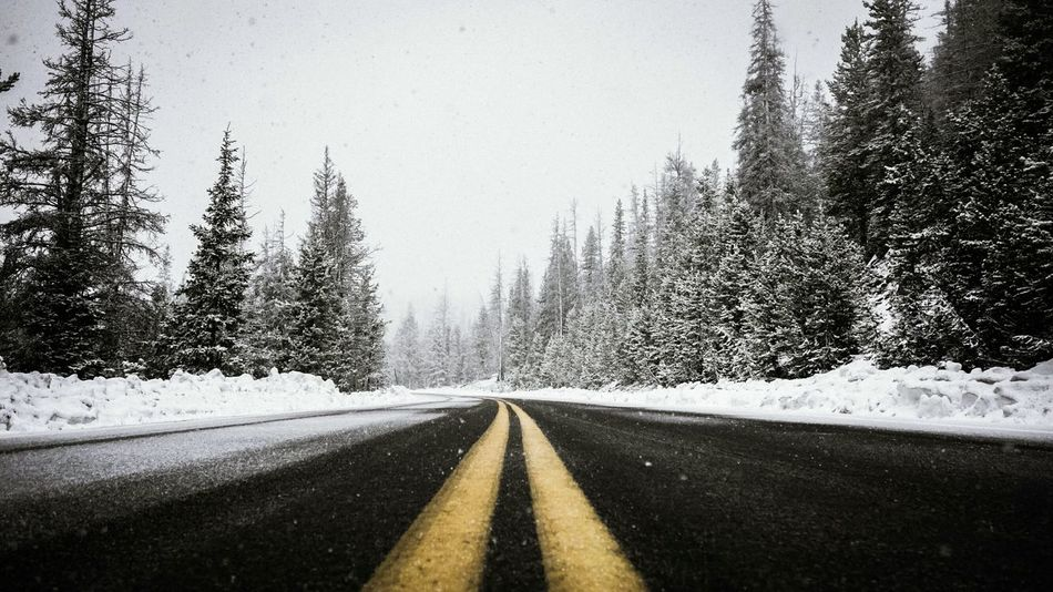 Tree Cold Temperature The Way Forward Road Transportation Winter Snow Windshield Nature No People Sky Outdoors Landscape Day Forest Snowing Beauty In Nature Scenics Close-up Lost In The Landscape