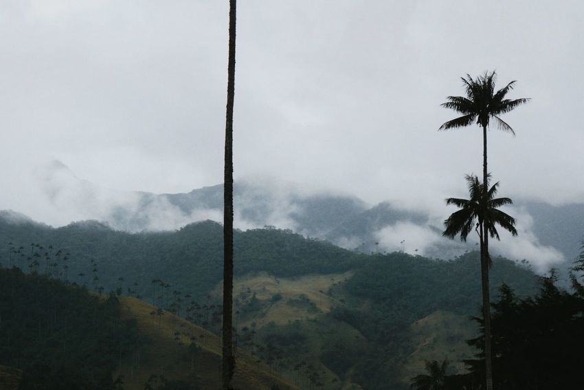 Beyond mountains. Colombia Landscape The EyeEm Facebook Cover Challenge Coffee On The Road Traveling