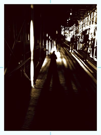 Silhouette Self Sepia Selfie