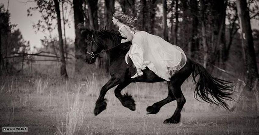 Princess on a mission @Instag_app Horses Horse Horsesofinstagram Pentax Wolfworx Horses_of_instagram Horsestagram Instahorses Wild Mane Instagood Grass Field Farm Nature Ilovemyhorse Beautiful Pretty Photooftheday Gallop Rider Riders Riding Friesan