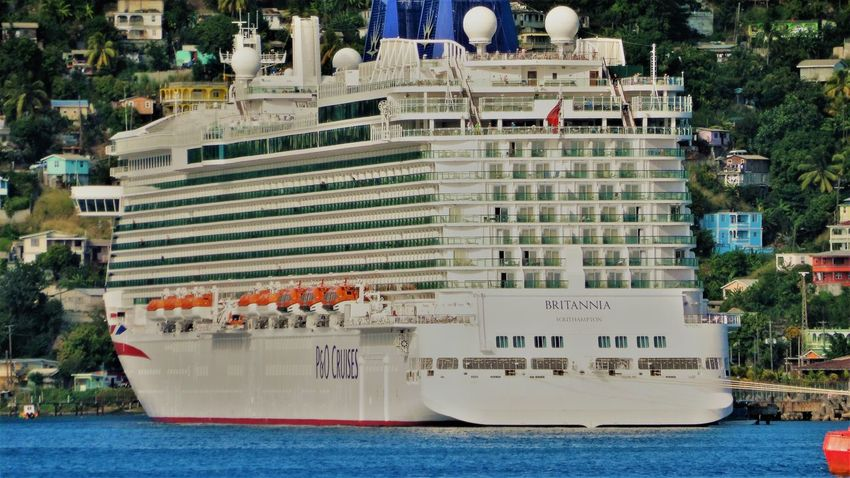 Caribbean Cruise Cruise Ship Cruiser Cruisers Harbor Dominica Houses Huge Sea Travel Traveling Trees