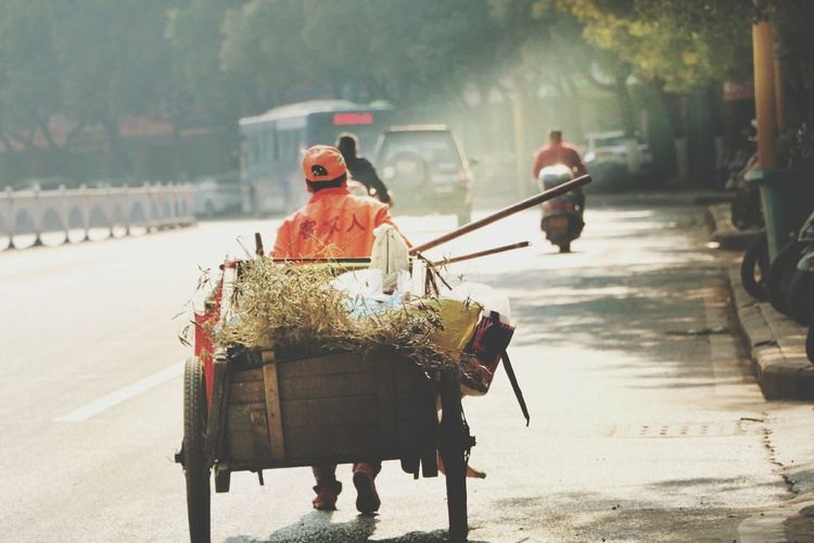 Man Driving Cart On Road In City