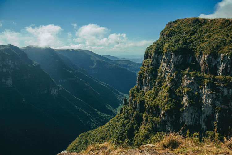 Fortaleza canyon with steep rocky cliffs covered by thick forest in cambara do sul. brazil.
