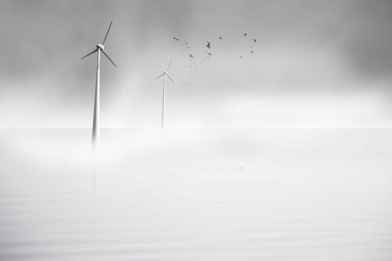 minimal Wind Turbine Wind Power Water Bird Windmill Power In Nature Sea Rural Scene Alternative Energy Fog Industrial Windmill Renewable Energy Hydroelectric Power Watermill Reservoir Water Wheel Fuel And Power Generation Traditional Windmill Horizon Over Water