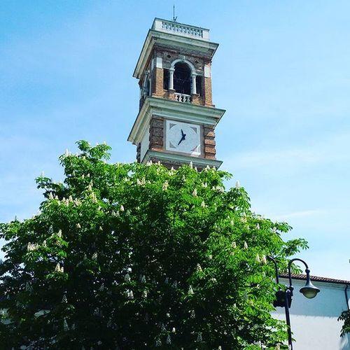 Campanile Orologio Albero Foglie Zelarino Bell Clock Tower Tree Leaves Sky Bluesky Cieloblu Cielo Torre Cloche Horloge Tour L 'arbre Feuilles Ciel Campana Reloj Torre árbol las hojas