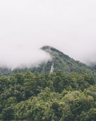 Cloud Fog Mist