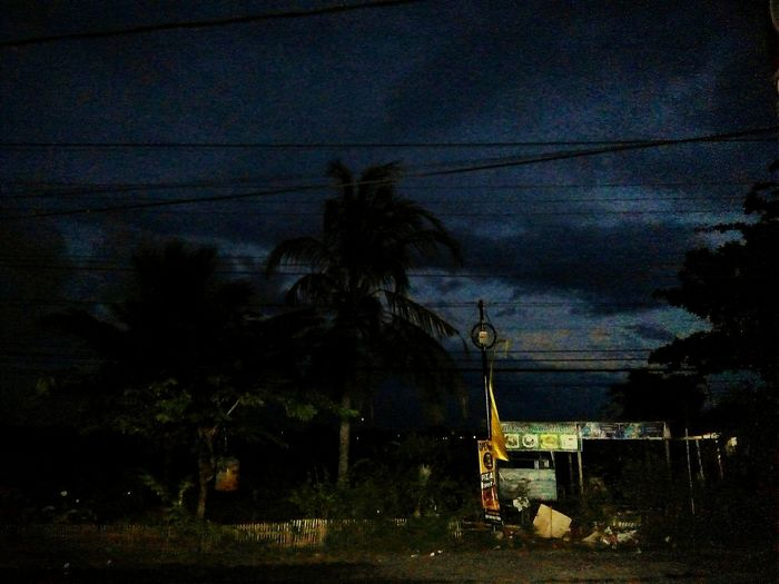 Canggu,bali Night Tree No People Outdoors Sky Nature First Eyeem Photo