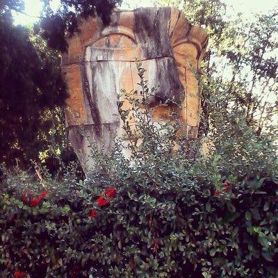 Roma Monumentistorici ??