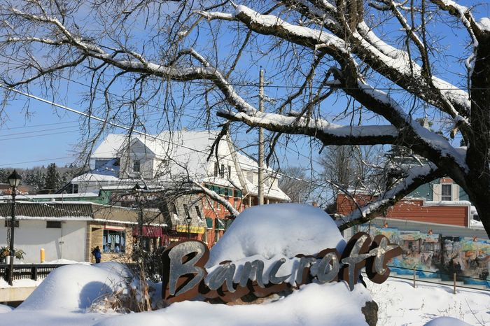 Public Places Tree Branch Branches And Sky Branches And Snow Snow Cold Temperature Winter Sky Residential Structure Urban Scene TOWNSCAPE Town
