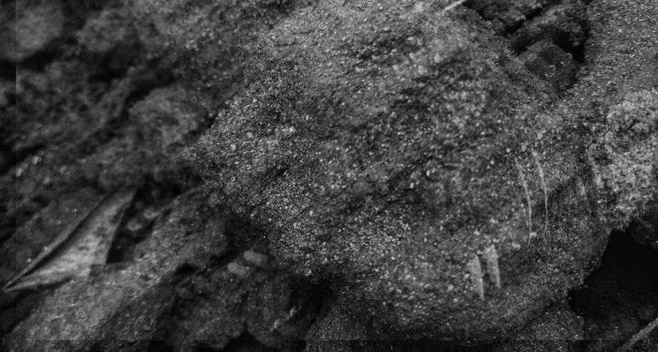 DoubleD Blackandwhite Backgrounds Full Frame Shadow Textured  Close-up Fabric Abstract Backgrounds Abstract