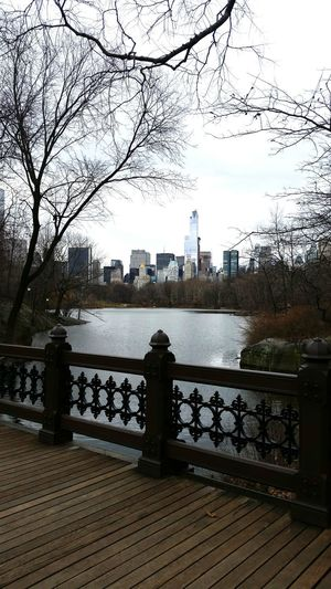 Central Park, New York Manhattan Reflection Nature Sky Architecture Urban Skyline Lake City Outdoors Tree