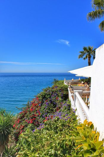 Blue Clear Blue Sky Clear Sky Green Green Color Horizon Over Water Idyllic Lone Cloud Nerja Nerja Andalucia Nerja Beauty Nerja Coast Nerja Coastal Scene Nerja Coastal View Nerja Coastline Nerja Scenic View Nerja Sea View Nerja Spain Outdoors Scenics Sea Sky Sunny Tranquil Scene Tranquility