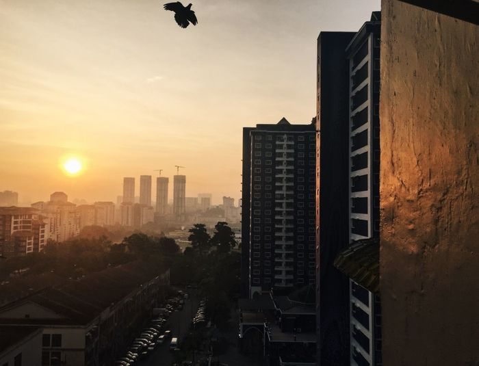 morning view Morning Sunrise Bird Building Exterior Architecture Built Structure Sky City Building Sunset Office Building Exterior Nature Outdoors Tall - High Modern Sun Skyscraper Residential District Cityscape No People Sunlight Office City Life