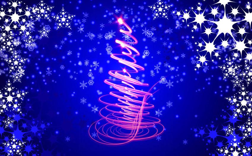 Illuminated christmas tree during winter at night