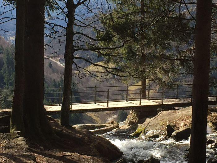 Todnau Todnauer Wasserfälle