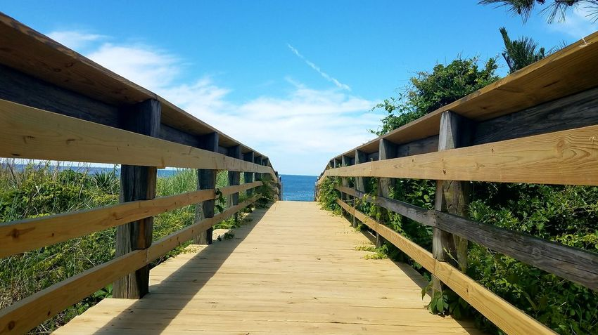 Walking To The Sea Outdoors Bridge - Man Made Structure Wood - Material Sunny Day Sky No People Sunlight Built Structure Tree Blue Travel Destinations Clear Sky Footbridge Nature Architecture Water The Great Outdoors - 2017 EyeEm Awards Beachphotography MyDayOff