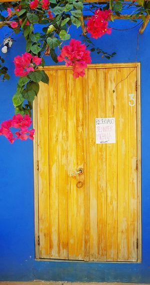 Multi Colored Yellow Wood - Material Door Architecture Close-up Building Exterior Built Structure Closed Painted Wall Wall Lamp Keyhole Closed Door