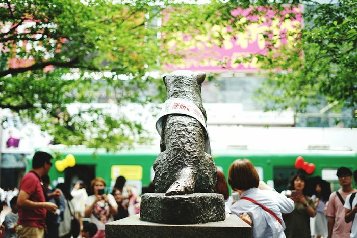 EyeEm Selects Tokyo Shibuya Hachiko Freshness Scramble Crossing Hachiko Statue Tree Statue Sculpture Day Large Group Of People People Outdoors Human Body Part Adult Adults Only Human Hand