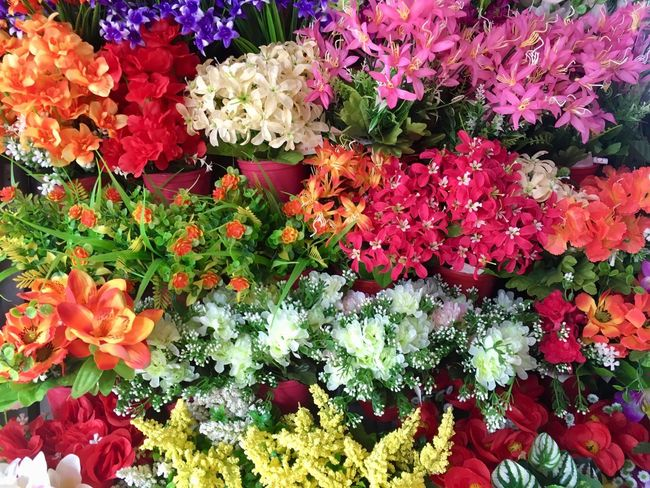 Multi colored background from plastic flowers Flowering Plant Flower Plant Beauty In Nature Vulnerability  Fragility Freshness Growth Full Frame Day No People Nature Backgrounds Flower Head High Angle View Petal Close-up Multi Colored