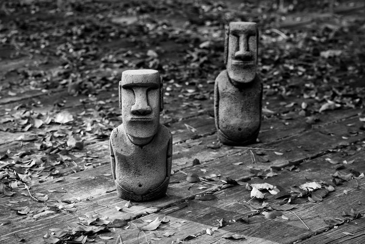 Moai Statue Wood Blackandwhite Easterisland Figures Leaves Monolithic Church Stone