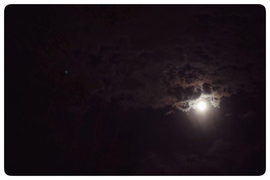 月夜--月影如日明,犬吠漫村界。 12820764 1613 10964