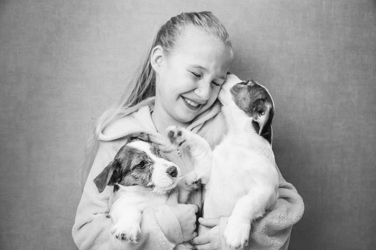 Caucasian beautiful girl with long hair holds two cute jack russell puppies in her arms