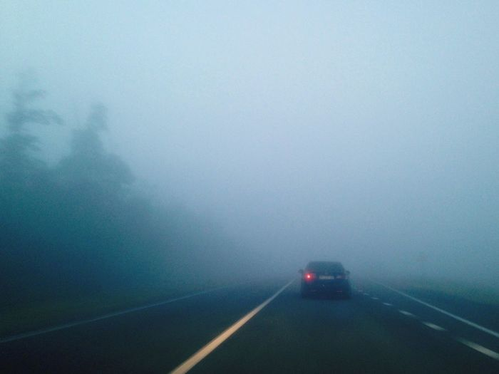 туман Дорога Fog Foggy Morning Fog_collection Road Roads Roadtrip