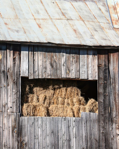 Hay bales in a barn