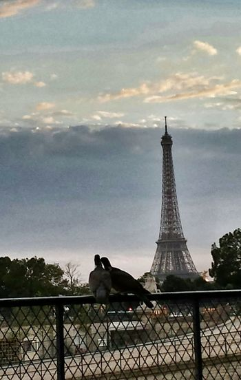 Love Romantic Paris Banality