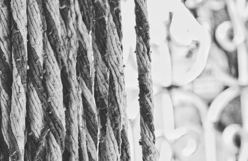 Blackandwhite Thread Patter Monochrome No People Perspective Tadaa Community Taking Photos Selective Focus Depth Of Field Daylight Sunny House Household Objects From My Point Of View Chennai Tamilnadu India Hanging Bokeh Material Cloth Quality Clean