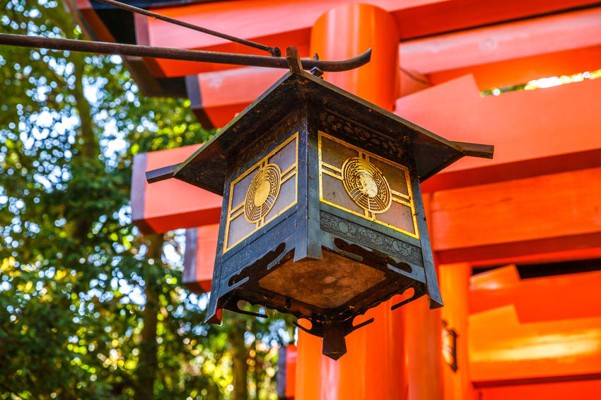 Kyoto, Japan - April 28, 2017: tourist woman walking under red torii gates of famous landmark Fushimi Inari shrine. Travel asia concept. Kyoto's popular landmark. Kyoto, Japan - April 28, 2017: Fushimi Inari Taisha is the most important Shinto shrine famous for its thousands of red torii gates.The lettering engraved on pole are the name of donated organizations Fushimi Fushimi Inari Taisha Fushimi Inari Taisha Shrine Gates Japan Photography Kyoto, Japan Shinto Shrine Shinto Temple TORII Torii Gate Tourist Tourist Attraction  Woman Architecture Belief Building Building Exterior Built Structure Communication Day Focus On Foreground Fushimi Inari Kyoto Fushimi Inari Shrine Hanging Japan Culture Kyoto Kyoto Japan Kyoto,japan Kyotojapan Lantern Lighting Equipment Low Angle View Nature No People Outdoors Place Of Worship Red Religion Shinto Of Japan Shintoism Shrine Spirituality Text Torii Gate Japan