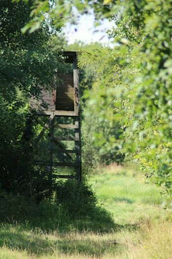 Watchtower Nature Reserve Nature On Your Doorstep