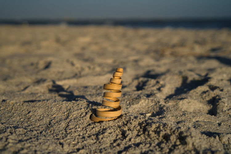 Close up of a decorative spiral made of wood on the beach on sanibel island