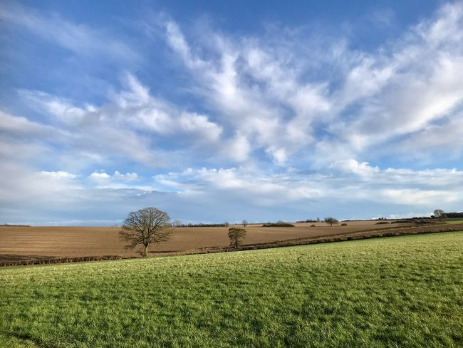 Hampshire, UK Field Agriculture Landscape Sky Cloud - Sky Rural Scene Farm Tranquil Scene Day Nature No People First Eyeem Photo