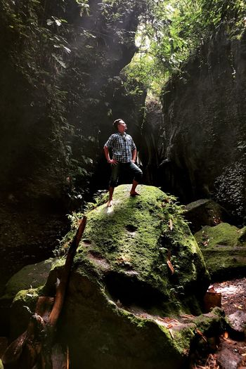 Man on rock in forest