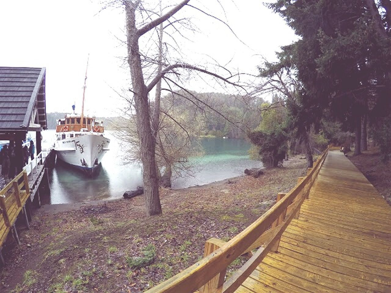 water, tree, river, built structure, nature, day, architecture, outdoors, building exterior, no people, scenics, nautical vessel, beauty in nature, sky