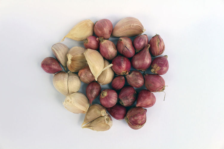 High angle view of fruits in plate against white background