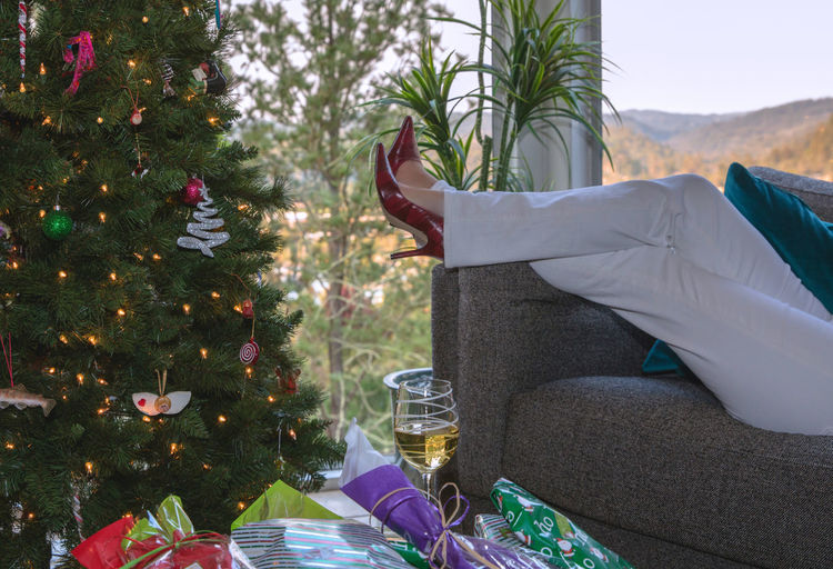 Low section of person with christmas tree