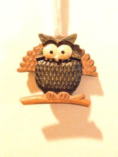 Owl フクロウ なんちゃってクジャク