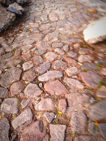 Street Streetphotography Backtohome Nature Photography Followme Nice Day Casativo Produtivo Day Pedras