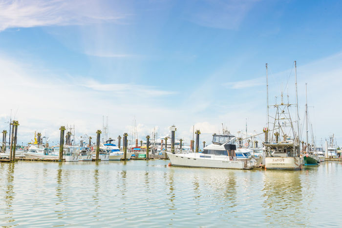 STEVESTON, BRITISH COLUMBIA, CANADA - JUNE 2017: various boats docked at the marina by the Fisherman's Wharf, a popular tourist area near Richmond, BC, Canada. Blue Skies British Columbia, Canada Fisherman's Wharf Fraser River Marina Morning Steveston Travel Boats Day Docks Editorial  June Landscape Marina Mast Moored Nautical Vessel Outdoors Spring Sunshine Tourism Travel Destination Water Waterfront