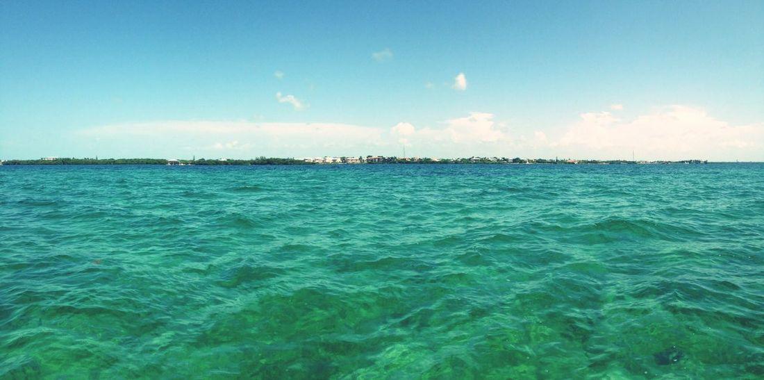 Floridakeys Keylargo Ocean