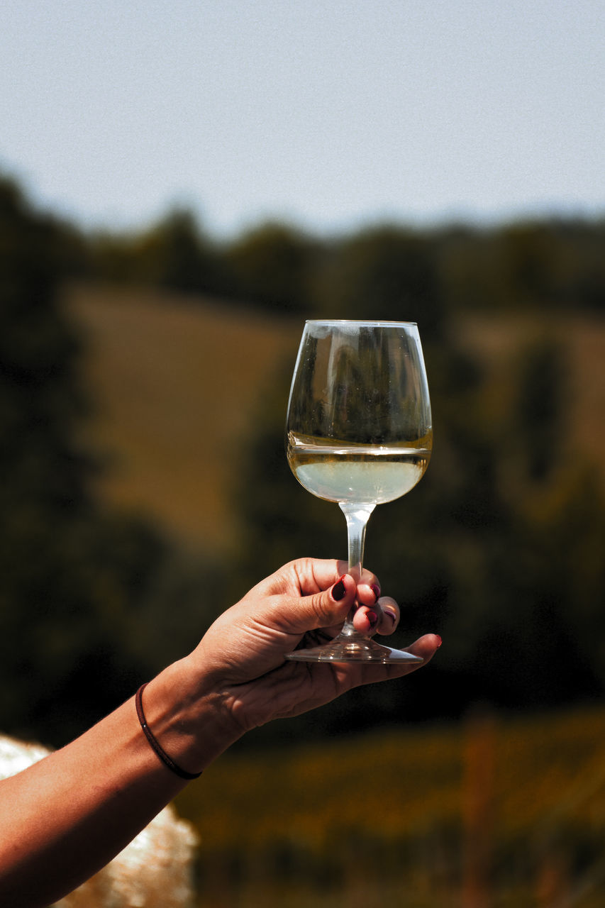 Cropped Image Of Woman Hand Holding Wineglass Outdoors