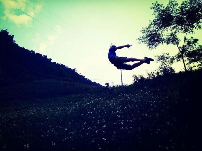 Silhouette man skateboarding on tree against sky
