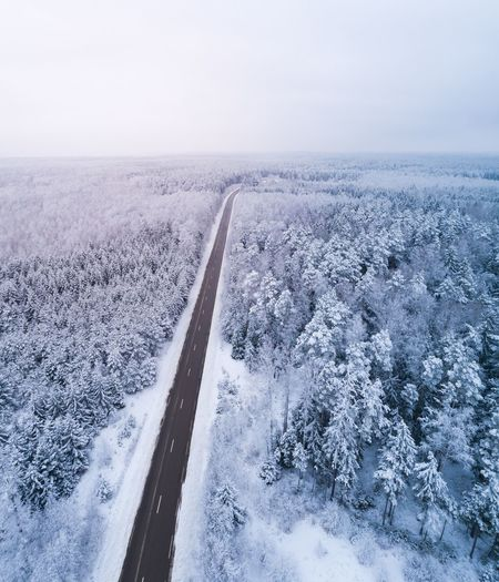 Winter Road Lithuania Norway Scandinavia Sweden Path Highway Motorway Evergreen Arctic Hard Winter Wintertime Winter Wonderland Road Roads Aerial View Aerial Photography Aerial Shot Drone  Dronephotography Forest Forest Photography Snow Snow ❄ Snow Covered Frozen Woods