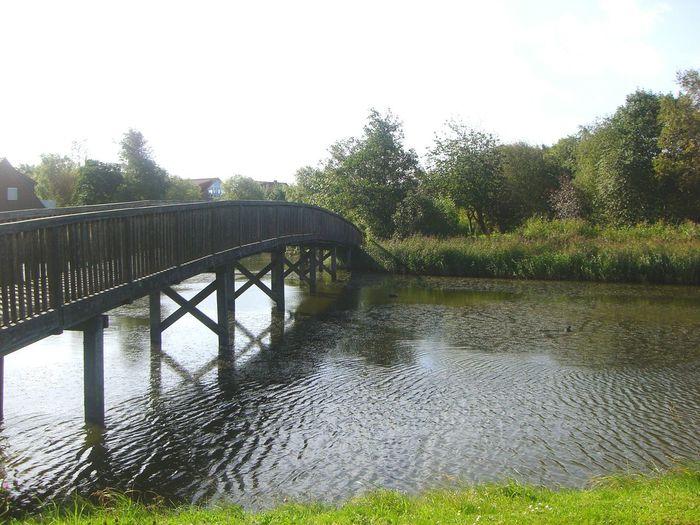 Bridge Long Water Beautiful Trees Likeit Niceplace Sunny Afternoon Ilovethisplace