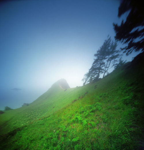 God's Thumb, Oregon. Reality So Subtle 6x6 pinhole. Kodak Ektar 100. Beauty In Nature Clear Sky Colorful Day Field Film Photography Grass Landscape Lincoln City, Oregon Nature No People Oregon Oregon Coast Outdoors Pacific Northwest  Pinhole Photography Reality So Subtle Scenics Sky The Great Outdoors - 2017 EyeEm Awards Tranquil Scene Tranquility Zaahphoto