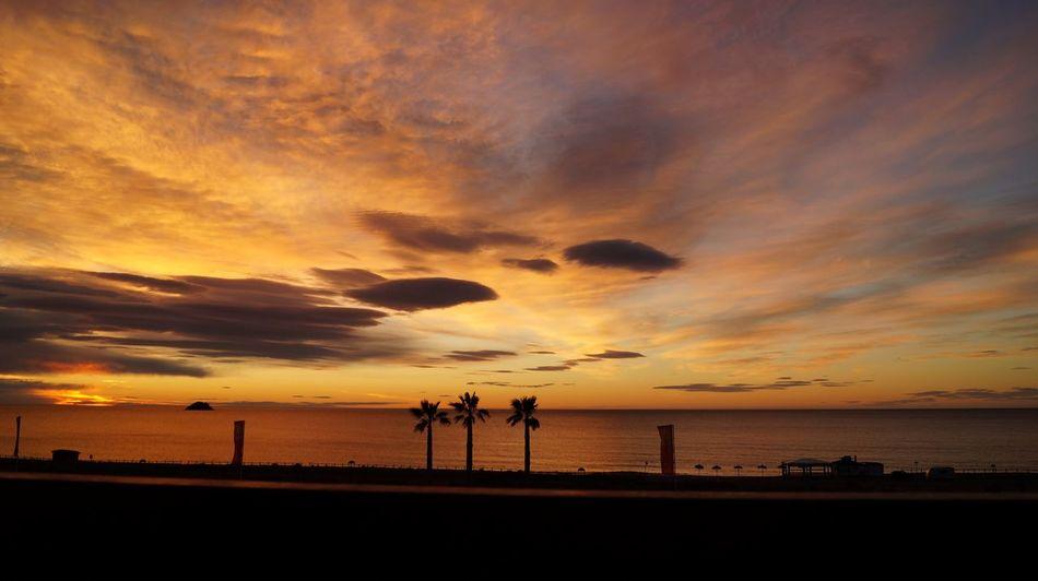 First time in Spain, April 2014 fell in love with the sunrise Sunrise Morning Sky Sun Sonnenaufgang Morgen Sonne Meer Mediterranean  Sanjuandelosterreros Pulpi Mardepulpi Mittelmeer Andalucía Andalusien Spanien Palmen Färben Colors Gold Morgenstund Dawn Clouds Wolken Wolkenliebe